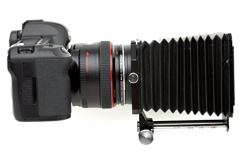 Mamiya lens shade on a Canon DSLR